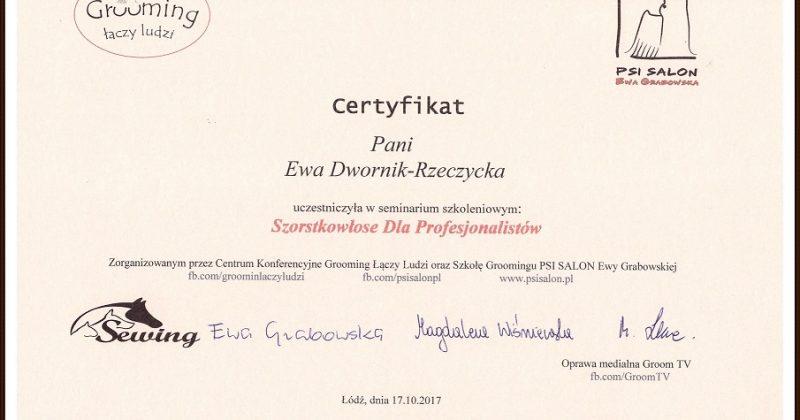 Psi Salon Katemori zdobył kolejny certyfikat!